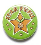 Star Pupil School Badge